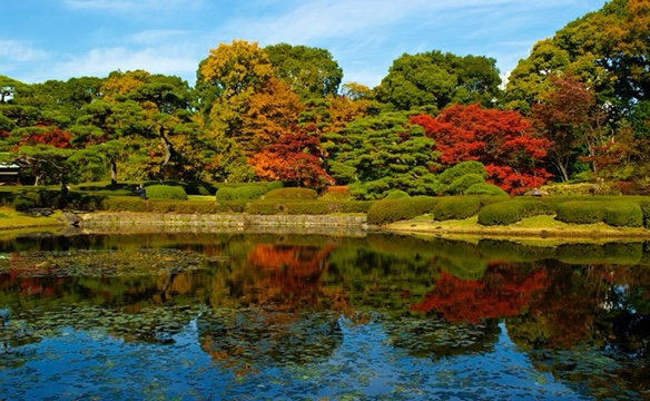 Imperial Palace Gardens Autumn colours