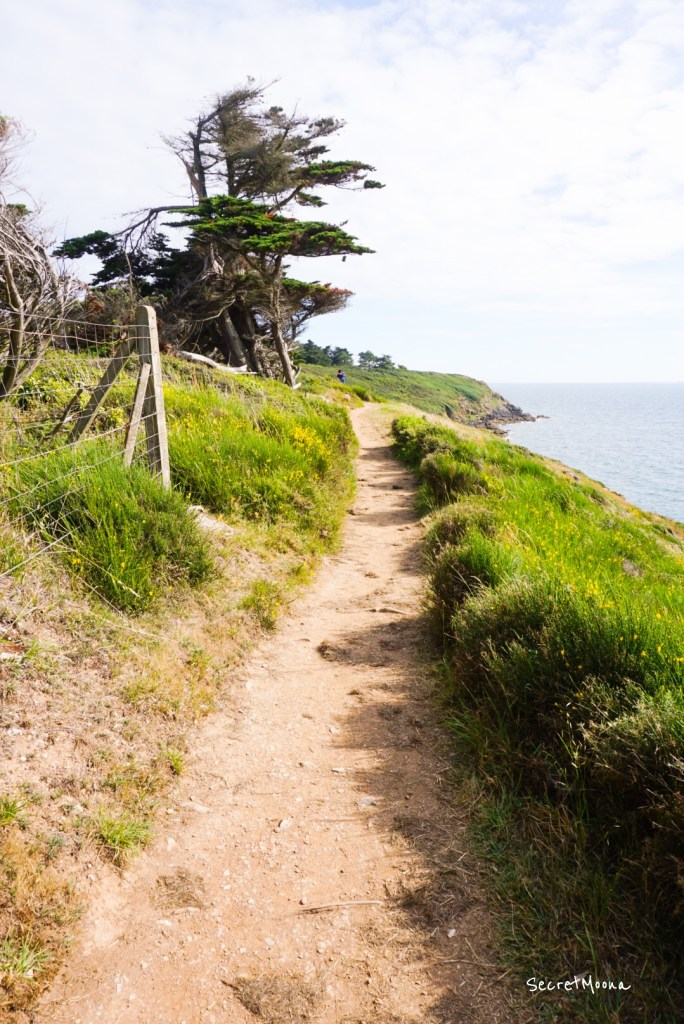 Path for coastal walk - Rhuys Peninsula, Gulf of Morbihan - Brittany