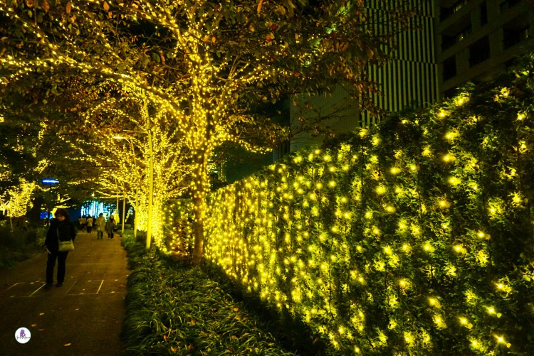 Wall lined with gold Christmas lights in Tokyo Omotesando