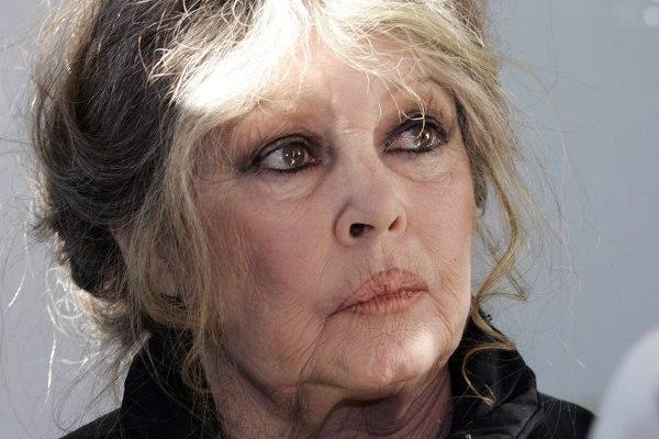 """Brigitte Bardot : """"Pourquoi je défends Marine Le Pen? Parce que j'aime les zanimaux !"""""""