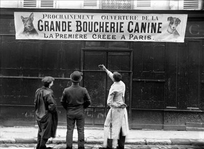 Grande_Boucherie_Canine_a_Paris De la viande de chiens bientôt vendue dans la première boucherie canine de France