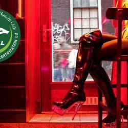 Le premier établissement de prostitution halal ouvre à La Mecque