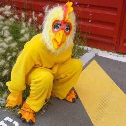 Dans l'espoir d'être hébergé à l'Élysée, ce SDF se déguise en poulet