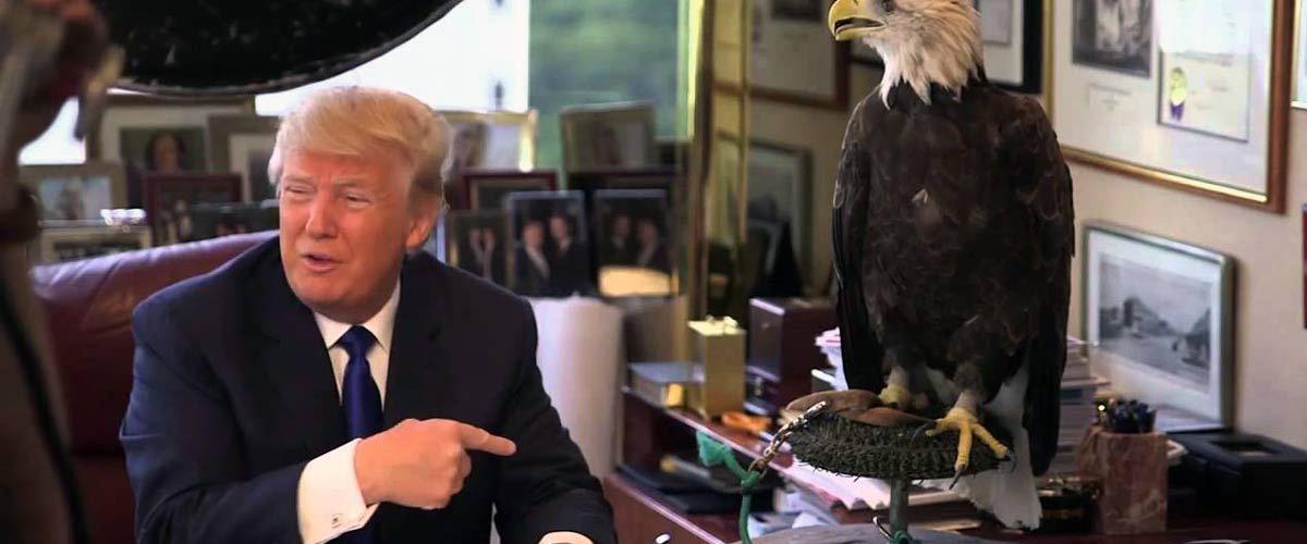 """""""Les vrais mecs ont un aigle ! """" : Donald Trump se moque de la """"petite poule"""" de Emmanuel Macron"""