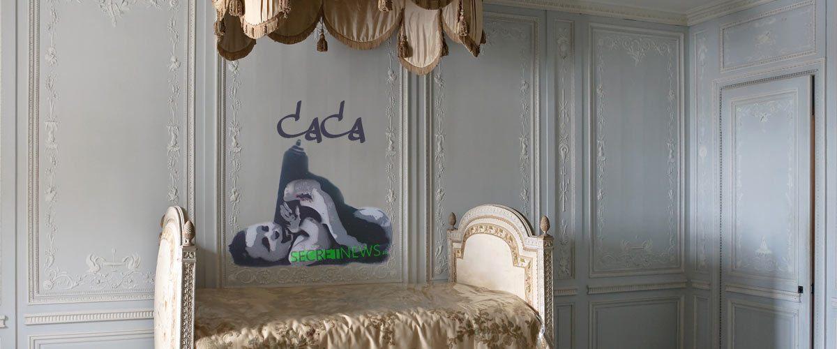 """""""Caca"""" - la nouvelle œuvre de Banksy découverte au château de Versailles fait réagir Stéphane Bern"""