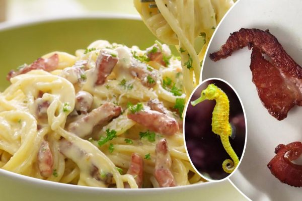Un restaurant chinois propose des pâtes à la carbonara aux hippocampes