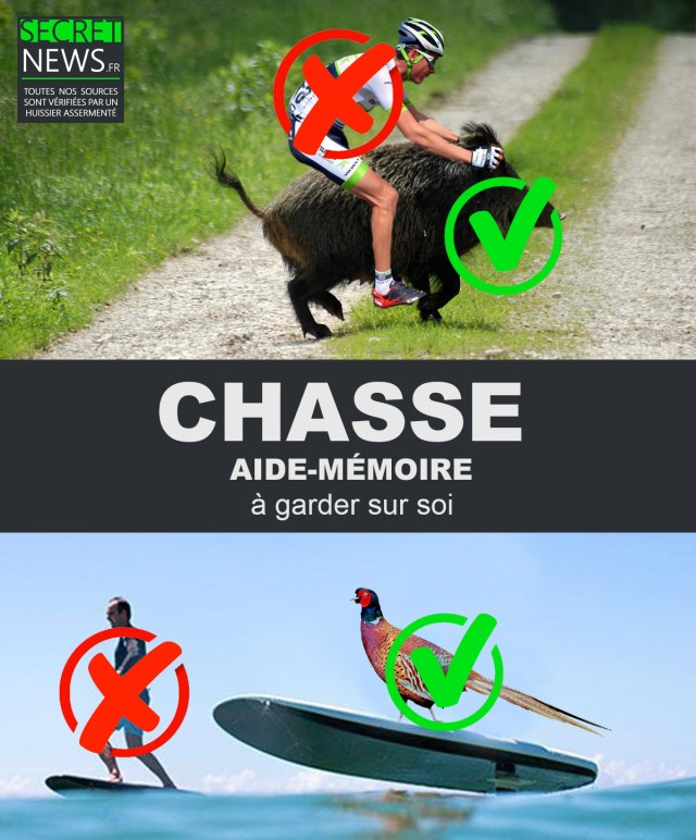 chasse-aide-memoire-1-640x772 CHASSE : une formation obligatoire pour apprendre à différencier un surfer d'un faisan