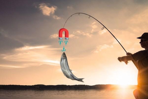 Magnet Fishing : des hameçons aimantés pour pêcher les poissons chargés aux métaux lourds