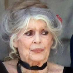 Âge, stress, fatigue ... Brigitte Macron méconnaissable