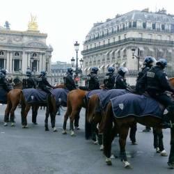 Gilets jaunes : Macron promet une ration d'avoine supplémentaire aux chevaux des CRS