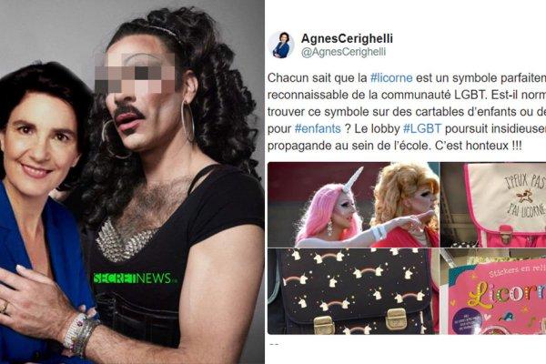 Agnès Cerighelli payée par le puissant lobby LGBT pour ridiculiser l'homophobie