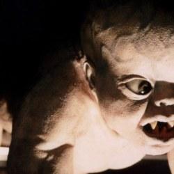 Les premiers bébés nés après l'incendie de Rouen se portent relativement bien