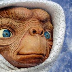 Le RN veut que Netflix retire E.T. car c'est l'apologie du voile et de l'immigration clandestine