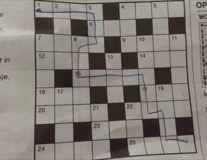 59857833_594849294345199_7550119522124955648_n Le jeune surdoué belge de 10 ans a réussi un puzzle de 500 pièces en 5 min !