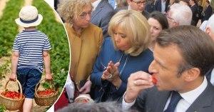 Les enfants des professeurs cueilleront les fraises Tagada du brunch présidentiel