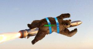 Trump riposte contre les frelons géants asiatiques par des ours kamikazes américains