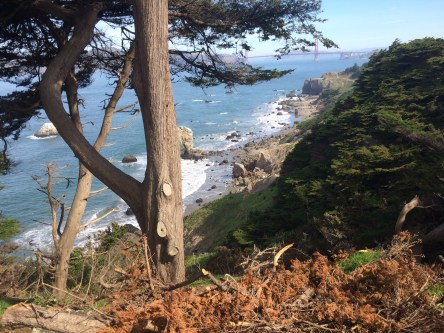 Lands End Hike