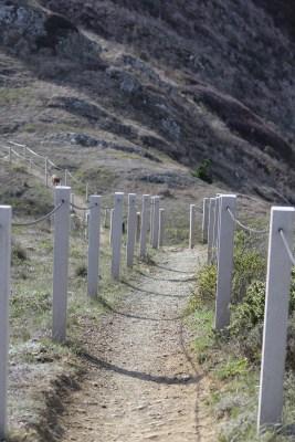 SCA Trail 11-20-15 0567