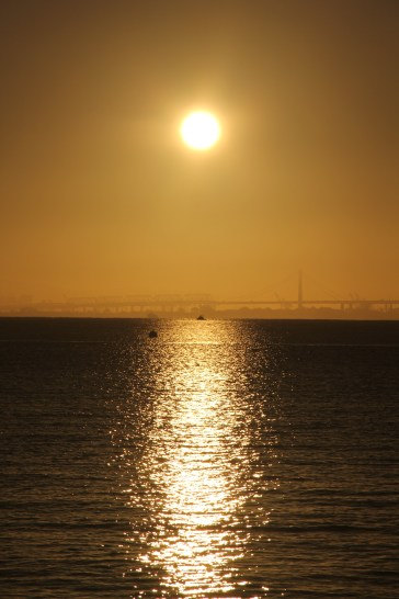 Sunrise on Bridgeway 10-29-15 9916
