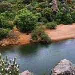 Objetivo: Conservar La Almoraima