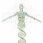 Líneas rojas en la investigación genética