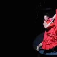 María, la Granaína: Encuentros Flamencos entre Graná y Argentina