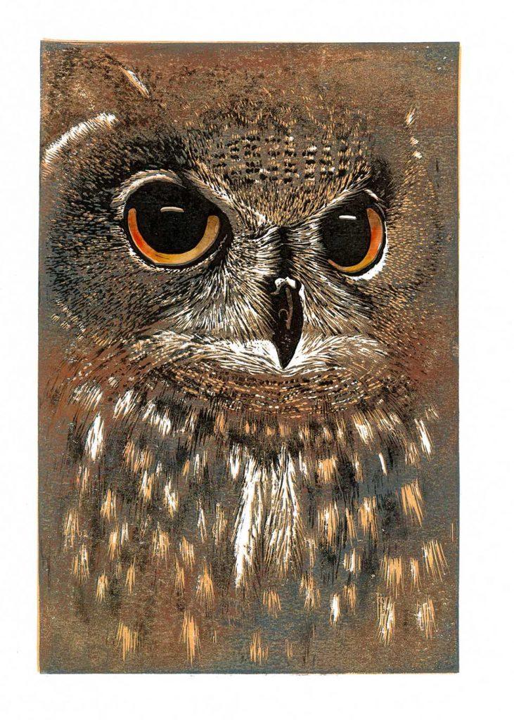 hazelmcnab owl21