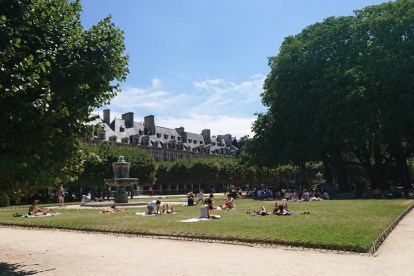 summer lawn in Paris