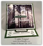 By Debbie Mageed, Adventure Awaits, Adventure Bound, Easel Card, Fun Fold, Masculine, Stampin Up