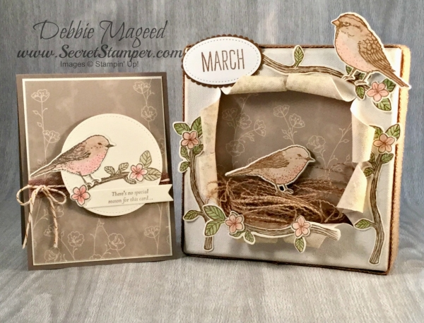 By Debbie Mageed, Best Birds, Special Reason, Falling in Love, Home Decor, Stampin Up