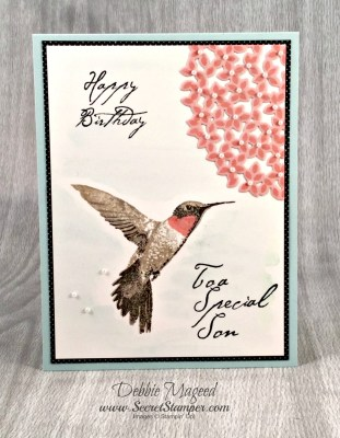 My Son's Birthday Card Using Stampin' Up! Picture Perfect