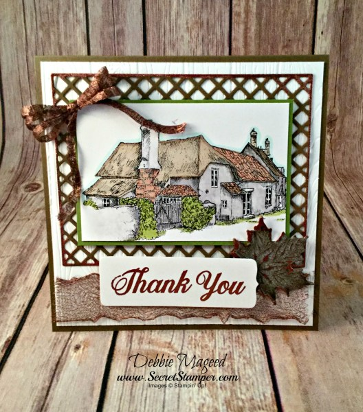 By Debbie Mageed, Daisy Delight, Thank You, Stampin Up