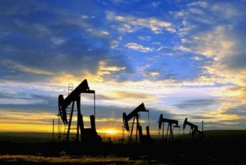 nafta-padae
