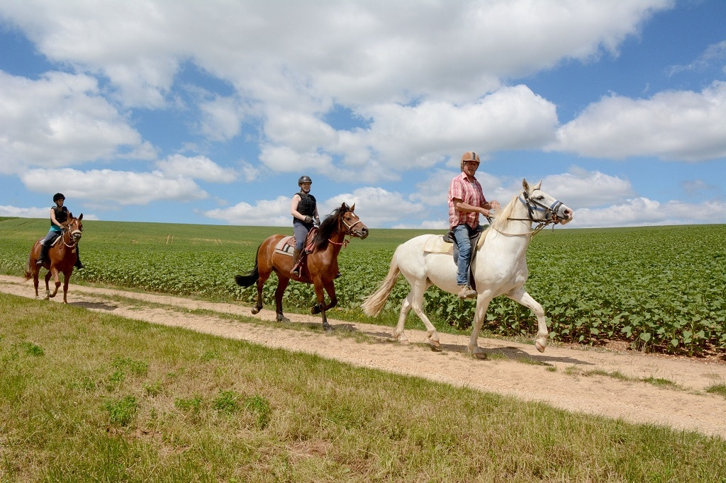 horseback riding in Burgundy