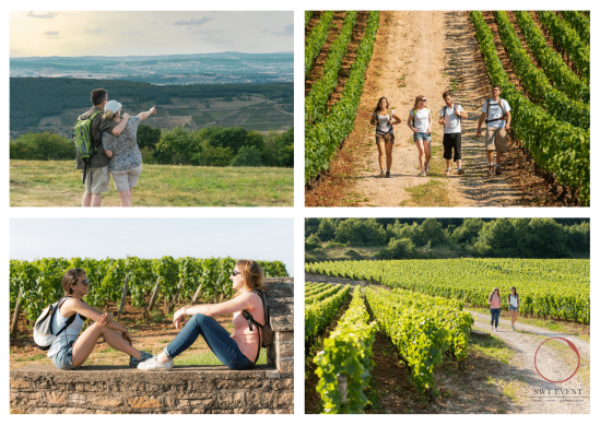 Walking and Hiking in the burgundy vineyards