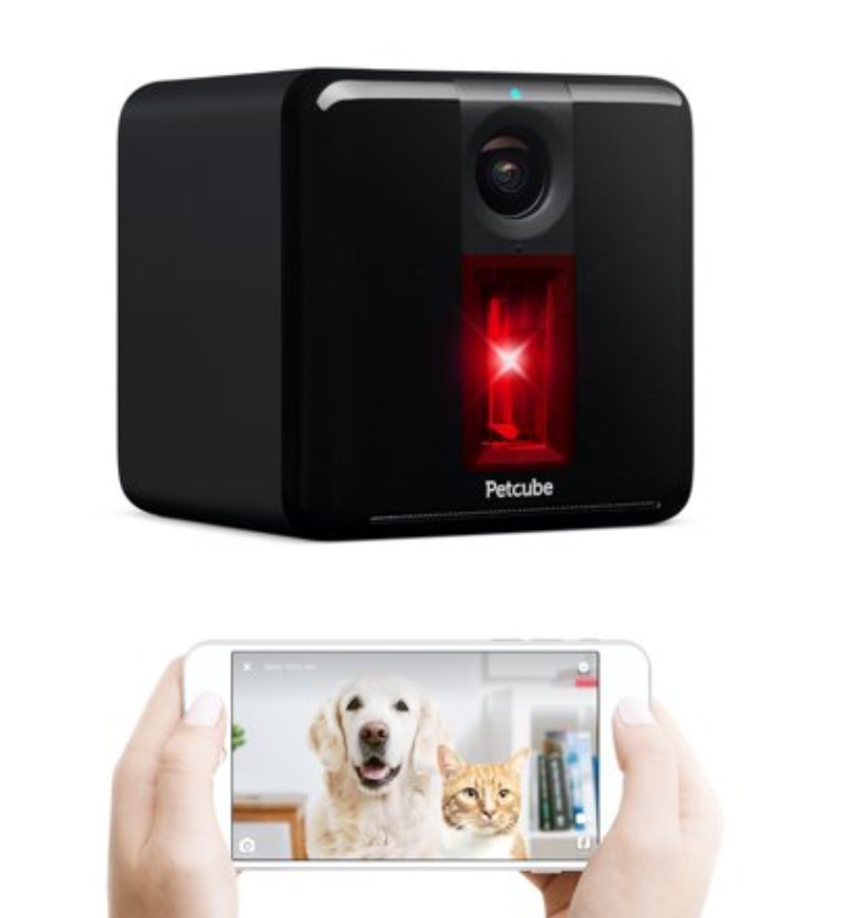 Smart Pet Gadgets: A petcube interactive dog camera with laser