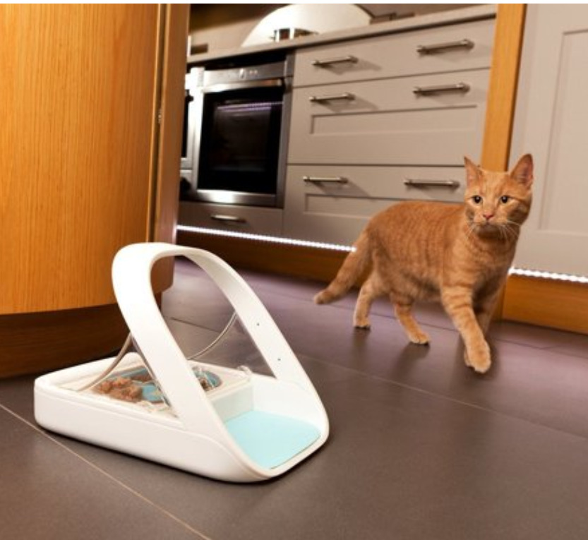 Smart Pet Gadgets: A microchip pet feeder