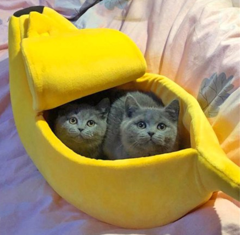 Cat Supplies: Small pet bed banana shape