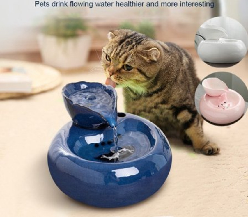 Pet drinking fountain for cats