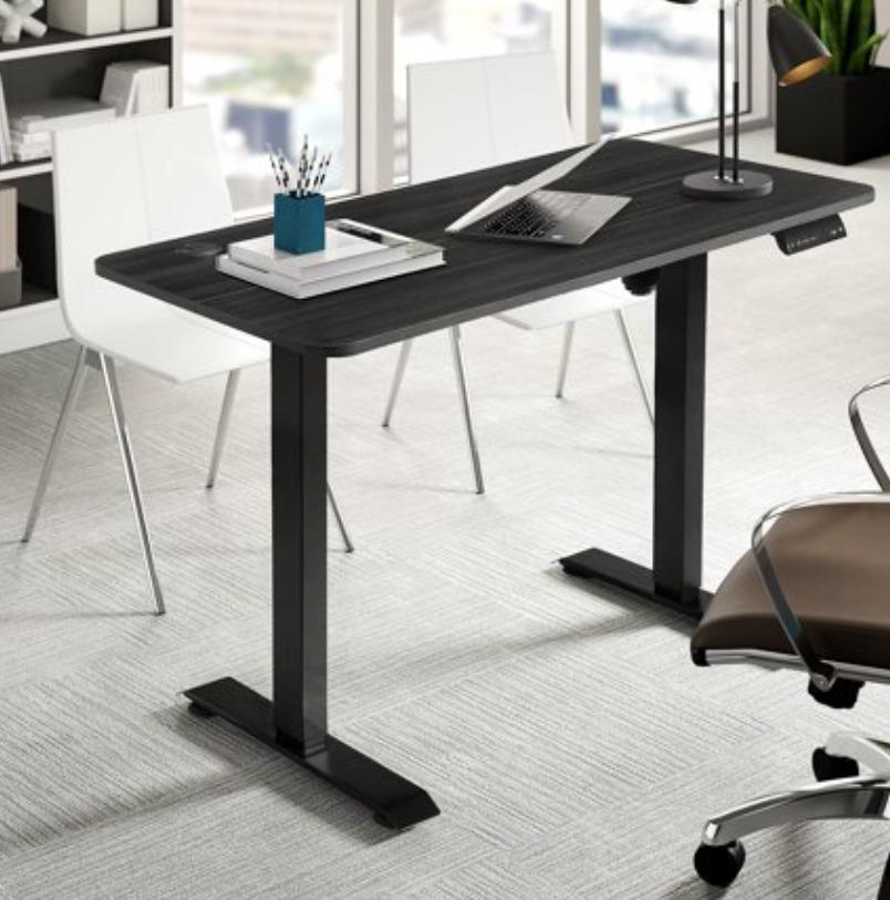 WALNEW Office Desk Electric Standing Desk