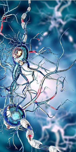 Huntington's Disease Treatment at Cardiff University using Stem Cell Transplants.