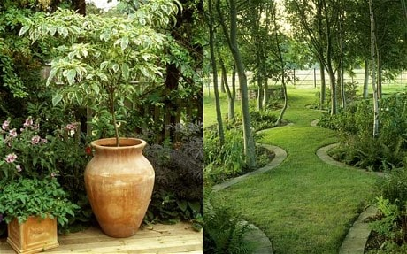 Planning a garden for a non-gardener - Telegraph on Non Grass Backyard Ideas  id=81789