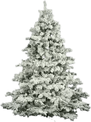 Christmas Trees Youll Love Wayfair