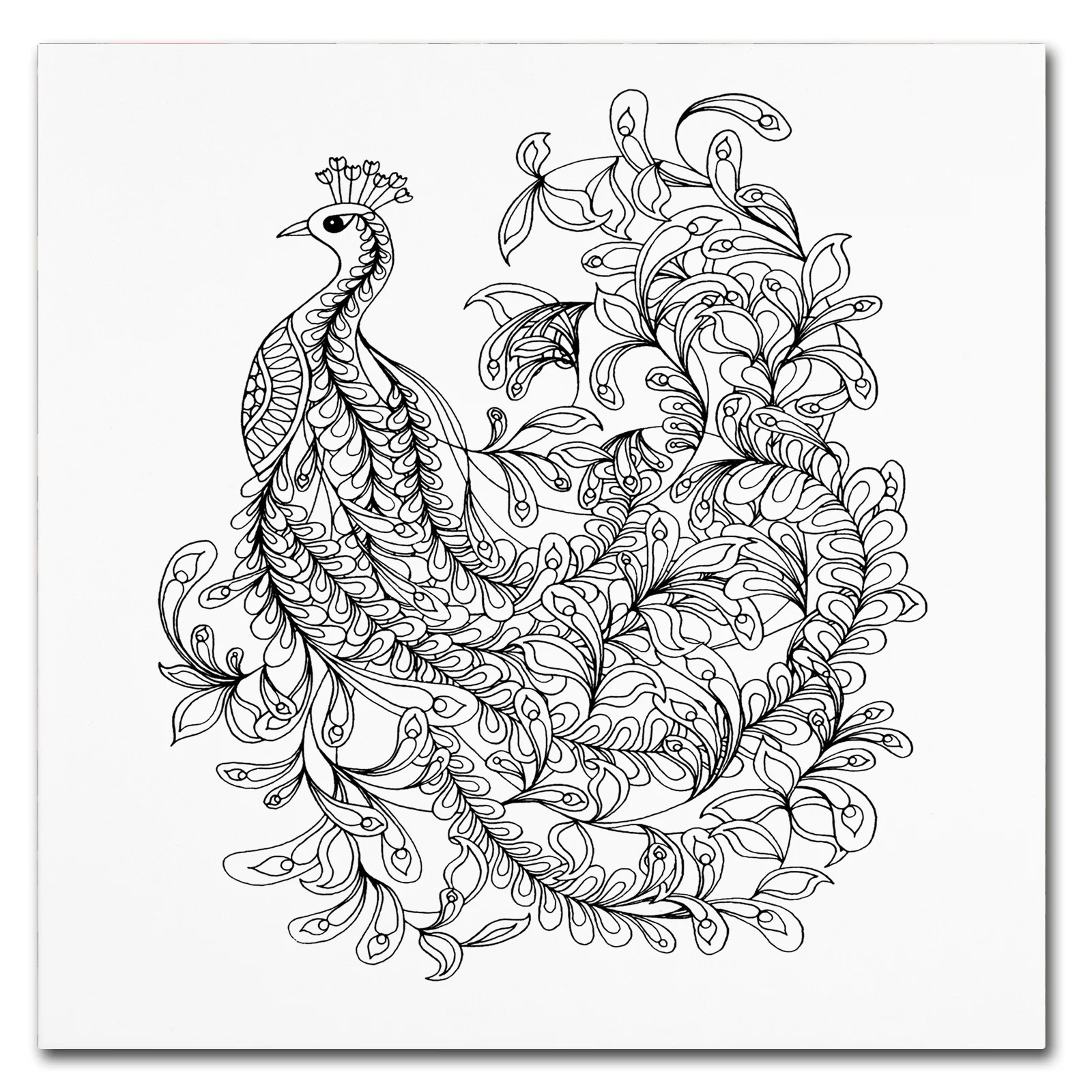 Trademark Art Fancy Peacock Drawing Print On Wrapped