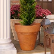 Bellmont Composite Pot Planter