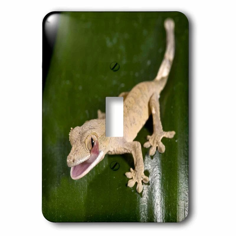 juvenile crested gecko 1 gang toggle light switch wall plate