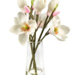 Charlton Home Blooms And Buds Magnolia Floral Arrangement In Vase Wayfair