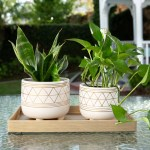 Ceramic Planters You Ll Love In 2021 Wayfair