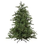 The Holiday Aisle Pre Lit Oregon Noble 9 Green Fir Artificial Christmas Tree With 3550 White Led Lights Wayfair