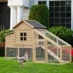 Tucker Murphy Pet Camarena Outdoor Wooden Raised Chicken Coop With Nesting Box And Chicken Run Reviews Wayfair